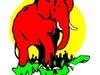 Big Time Safaris Ltd