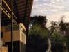 Mooa Zambezi Coll 8178