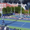 Some Of The Side Courts