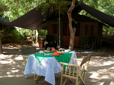 Tent Envrnment 3