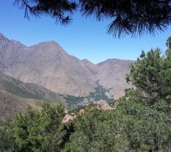 Imlil Trekking