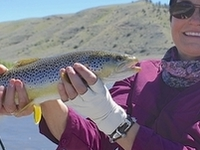Yellowstone River Fly Fishing