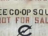 C Squat