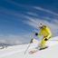 Sm Tnsw Skiing Large
