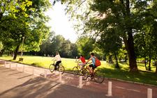 Sibiu Park Bicycle