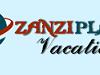 Zanziplanet Logo
