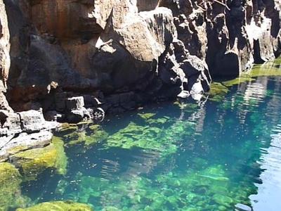 Fresh  Water  Swimming In Of  Santa  Cruz