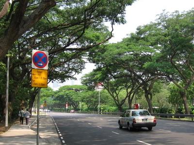 Bukit  Timah  Road  4  2 C  Aug  0 6