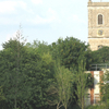 St Mary The Virgin Church From Ladywell Fields