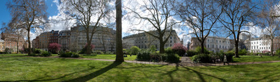 View Of St James's Square