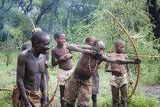 Bushmen With Arrow