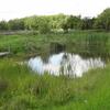Blondin Park Nature Reserve