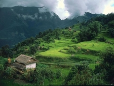 Country Side Of Nepal
