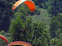 Festival Of Paragliding In Solang