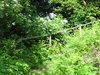 Fox Wood Nature Reserve
