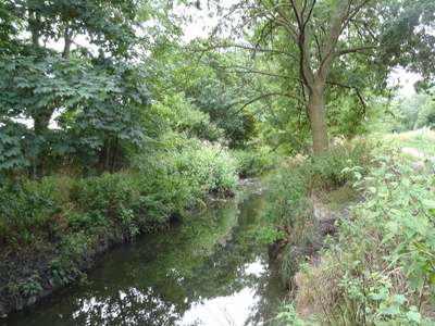 Hogsmill River In Elmbridge Open Space