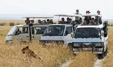 Masai Mara Safari Game Drive