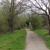 Merton Park Green Walks