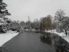 Ravenscourt Park In Winter