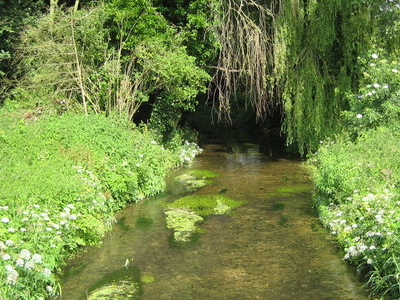 The River Misbourne