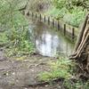 Sir Joseph Hood Memorial Wood