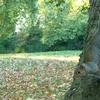 Southwark Park Wildlife