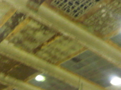 Streatham Ice Arena Ceiling
