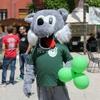 The American University Of Rome's Mascot