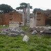 The Remains Of Basilica Aemilia