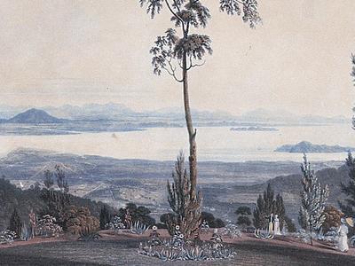 Mount Jerai Viewed From Penang Island