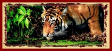 Golden Triangle Tiger Tour