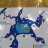 Chini Lake Map