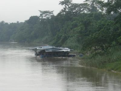Raft House Near  Temerloh
