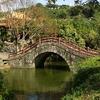 Shuangxi Park And Chinese Garden - Moon Bridge