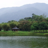 Taiping Lake Gardens With Hills Behind