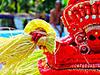 250px Vishnu Theyyam