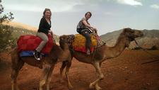 Atlas Camel Trek