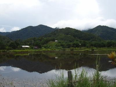 Bario  Sarawak