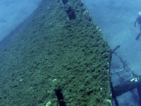 Diving In Mykonos By Godive Mykonos  180