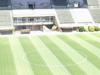 Arquitecto Ricardo Etcheverry Stadium