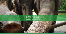 Horizontal Cover Seven Days Family Dream Tour Bali