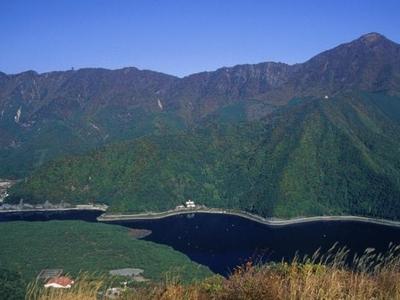 Aokigahara And Saiko Lake