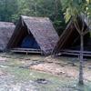 Utan Paradise Jungle Camp