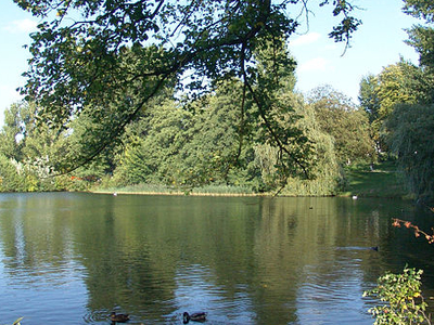 Another View Of Weisser See