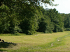 Amsterdamse Bos In The Summer