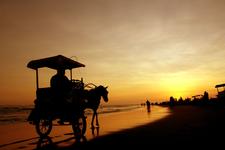 Indrayani Beach Yogyakarta