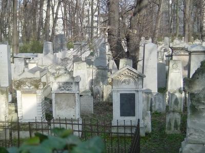 Cemetery As Seen From Währing Park
