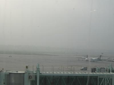 Kolkata  Airport  New  Terminal Aerobridge