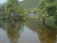 Kambalakonda Wildlife Sanctuary