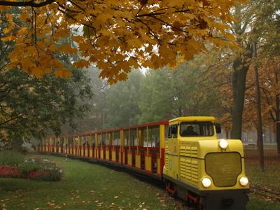 Locomotive D4 Of Prater Liliputbahn